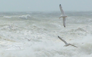 Wild and windy sea 1 copyright Ann Perrin 2012