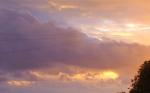 A bold brassy celebration Sussex sky x